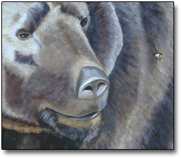 bear and bee close-up