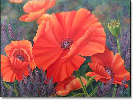 Poppies by Joan Hansen